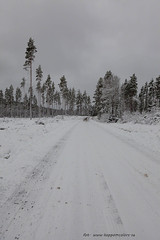20171128001030 (koppomcolors) Tags: koppomcolors winter vinter snö snow värmland varmland sweden sverige scandinavia