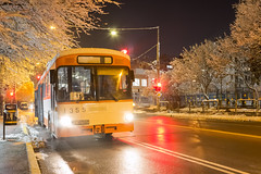 1355 - 11 (CometBG) Tags: bus vehicle outdoor mercedes sofia snow night lights light o305