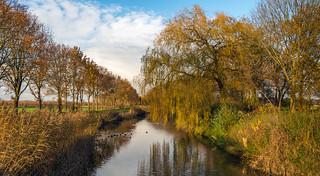 Picturesque landscape in autumn