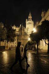 XE3F6206 (Enrique Romero G) Tags: giralda plaza place triunfo sevilla spain night noche nocturna lluvia fuji fujinon18f2 fujixe3