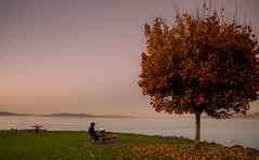 IMG-NT-4394 (thepianistalex) Tags: tacoma mountrainier washington autumn pugetsound landscape water