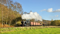 4277 on a goods train between Consall and Cheddleton. (johncheckley) Tags: d90 uksteam loco goods train railway autumn trees