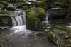 Rïo Aller (lesxanes) Tags: río river seda bosque forest asturies aller