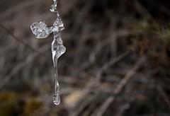 glaçon (bulbocode909) Tags: valais suisse glaçons gel glace nature automne montagnes