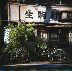 (jellyfish88) Tags: 120 film analog mediumformat holga tokyo street filmphotography analogphotography toycamera lofi