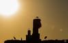 Sundown at El Badi Palace (jennifer.stahn) Tags: travel travelphotography marokko morocco marocco maroc marrakech marrakesch marrakesh el badi elbadi palace storch strok störche sundown sonnenuntergang nikon silhouette jennifer stahn