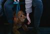 IMG_0568.jpg (Jordan j. Morris) Tags: photos 50mm picture photooftheday gloomy live washington exposure art jomophoto 2470mm color capture 6d pic photo focus composition snapshot picoftheday pikeplace vibrant seattle