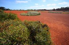 Cranbourne RBG Nov 2017 005 (Graeme Butler) Tags: water landscape history gardens australianplants architecture victoria australia