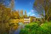 Along the river Lagan (Dhina A) Tags: sony variotessar t fe 1635mm f4 za oss sonyfe1635mmf4 sel1635z a7rii ilce7rm2 a7r2 shawsbridge riverlagan river water reflection autumn colors