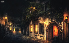 Black Forest capital Freiburg (VandenBerge Photography (On/off ....but mostly off) Tags: freiburgimbreisgau germany europe city fairytale hotel ivy lights night ancienttown oldtown canon