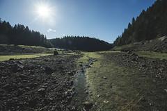 Oregon Adventures (C. Campbell) Tags: oregon oregonexplored eugeneoregon highway58 willamette nikon d600