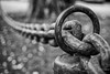 Crossing barriers can be as simple as a smile (Peter Jaspers) Tags: frompeterj© 2017 olympus zuiko omd em10 1240mm28 hff fence fenced happyfencefriday loubressac midipyrenees occitaine lot bw bn zwartwit bokeh dof clôture silverefexpro