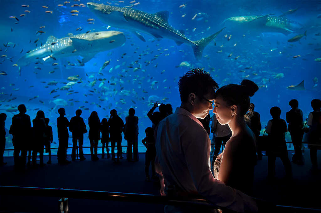 沖繩婚紗沖繩美麗海水族館婚紗拍攝