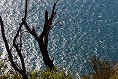 sydney, view from lighthouse, palm beach (cyril.franconie) Tags: sydney palm beach australia