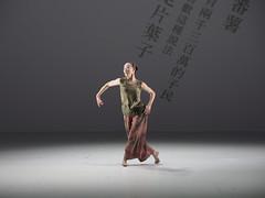 _9040139 (黎島羊男) Tags: 雲門 關於島嶼 林懷民 formosa cloudgatedancetheatre cloudgate dance theatre linhwaimin olympus em1markii zuiko 1454mm