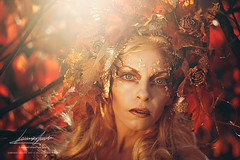 Nymph of the red leaves (valeriafoglia) Tags: autumn beautiful colors dark dream dress ethereal fairy fantasy fall ghost leaves lady maiden red nature purity spirit soul surreal woman warm woods