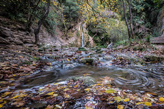Wake me up when november ends (Tiomax80) Tags: vallondescarmes stream brook vallon des carmes barjols var varois fall autumn leaves fell fallen water cascade waterfall slow longexposure long exposure creek dry green yellow wide angle nikon d610 tiomax french france nature