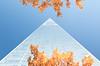 Pyramide (Ste.Baz) Tags: newyorkcity oneworldtradecenter sky skyscraper fall leaves automne feuillage bleu azul blue point pyramide pyramid usa nyc newyork