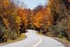 fall roads (londa.farrell) Tags: 2017 canada canon canondslr canoneos7dmarkii dslr fall fallcolours novascotia october autumn daytime leaves outdoor trees newport