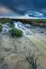 Drowned Land (Harold van den Berge) Tags: canon1635lf4 clouds gras grass haroldvandenberge landscape landschap leefilter lucht mudflats netherlands nieúwnamen outdoor rainclouds regenwolken schorren seaweed sky slikken verdronkenlandvansaeftinghe water westerschelde wolken zeeland zeeuwsvlaanderen saltmarch