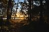 DSC_0029 (RUMTIME) Tags: sunset coochiemudlo coochie queensland australia beach sand light