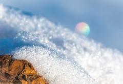 Ice crystal rainbow on a stick HMM (Different Aspects) Tags: macromondays stick ice snow macro 7dwf monday freetheme