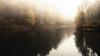 Lieblingswetter (elseyjetter) Tags: nebel nebelstimmung nature nrw sauerland trees mist fog talsperre fürwigge herbst herbstfarben lüdenscheid