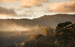 Lakeland Light (Tracey Whitefoot) Tags: 2017 tracey whitefoot autumn fall rydal water lake district lakes cumbria trees light dusk sunset atmosphere atmospheric