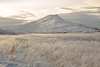 Icy. (joningic) Tags: eyjafjörður eyjafjarðarsveit eyjafjordur landscape eyjafjarðará iceland ice icy icelandic icelandicnature winter mountains mountain straws