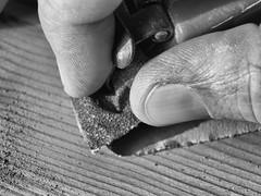 at work (H - D - O) Tags: macromondays fingertips wood sandpaper work carpenter