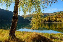 The lake (Ellen van den Doel) Tags: autumn natuur color meer water reflectie outdoor 2016 fall heuvel herfst trees reflection landscape bomen landschap tree belgium oktober ardennen belgie natur hill lake weekend mountain stavelot wallonie belgië be
