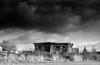 «Autumn Middle Russian landscape» (noir version) (Andrey  B. Barhatov) Tags: moscowregion russia blackandwhite blackandwhiteonly noiretblanc noir contrast clouds cloud cloudyweather cloudcover landscape mood monochrome monotone light nature outdoor outdoors travel silberra panchromaticfilm panchromatic dark bnwmood bnwfilm bnw bnwdark bw bwfp geobw 2017 analog lomography barhatovcom analogphoto analoguephotography film filmtype135 filmfilmforever filmoriginal filmmood filmisnotdead filmphotography filmphoto d76 россия пленка фотопленка чернобелое пейзаж настроение осень dmitrovskydistrict village autumn storm dramatic московскаяобласть ик1пновоегришино kiev4a jupiter8m jupiter8 rangefinder nikonsupercoolscan5000ed studiovideo8 silberrapan200