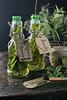 Aromatizando mi aceite de oliva (Ivannia E) Tags: aceitedeoliva aceite hierbasaromáticas tomillo romero albahaca orégano hierbasfrescas oliveoil foodphotography healthtylifestyle