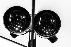 20171112_marit-24-2 (vmonk65) Tags: fernglas reflexion spiegel nikon nikond810 bw blackwhite makro
