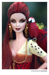 The Scarlet Macaw . Barbie Doll (PruchanunR.) Tags: the scarlet macaw barbie doll