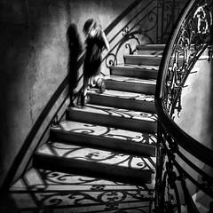 El resplandor / The Shining (EXPLORE Nov 19, 2017 #6) (jfraile (OFF/ON slowly)) Tags: blancoynegro escaleras luz sombras resplandor jfraile javierfraile blackandwhite stairs light shadows