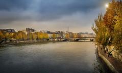 Paris (Luc Mercelis) Tags: paris seine sonyilce7 autum minoltaprimelens24mm sun cityoflight