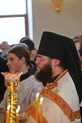 61. Собор Архистратига Михаила в Адамовке 21.11.2017