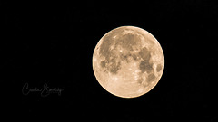 The man in the moon (CecilieSonstebyPhotography) Tags: night markiii canon5dmarkiii planet black moon space yellow sky canon