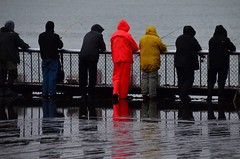It's okay to add some colour (James_D_Images) Tags: seattle waterfront pier railing fishing people rain reflections water ocean rods orange yellow gear line
