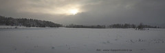 20171129001144 (koppomcolors) Tags: koppomcolors koppom snö snow winter vinter värmland varmland sweden sverige scandinavia