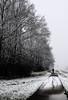 cc aka cool cyclist (tvdijk19) Tags: travel fietser netherlands flevoland winter frost freezing cold cylist