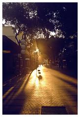 J'aime bien les couchers de soleil. (Anita MW) Tags: afternoonlight manly nsw iphone bicycles shadows melancholy australia light mydaytoday northernbeaches sunset matsgallery lepetitprince coucherdesoleil