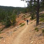 Thunder Mountain Trail thumbnail