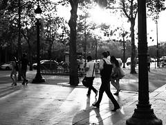 Heading Home (thedailyjaw) Tags: x100f x100series fujifilm fuji classicchrome paris france versailles bacchus statues garden gardens green trails maze garedunord parisian arcdetriomphe louvre sites historic artistic lines leading light blackwhite bw blackandwhite