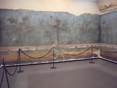 Gli affreschi della villa di Livia a Palzzo Massimo _01