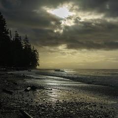 China Beach (ScottyBgood) Tags: scottyandronnyshow hellobc beautyofbc vancouverisland prismphotocontest explorebc lifeincanada chinabeach pockettrees canadiandestinations britishcolumbia ilovebc tourcanada