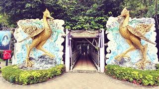 grotte khao kob trang - thailande 1