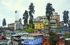 Darjeeling (norman preis) Tags: d meurig normanpreis travel trafeilio trip taith backpacking gaeaf winter 2015 india gwylia gwyliau holiday darjeeling christmas nadolig dolig