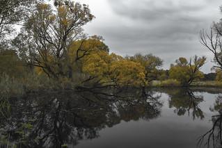 Herbstfarben, > Vielen Dank an alle, die sich die Zeit nehmen, meine Fotos anzusehen und zu kommentieren  < < <       > > > Interesting  Thanks to everyone who takes the time to view, comment